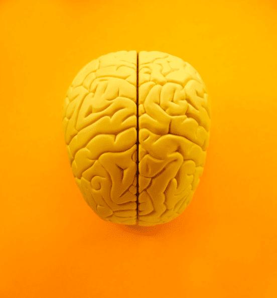 cerebro-dia-de-la-creatividad